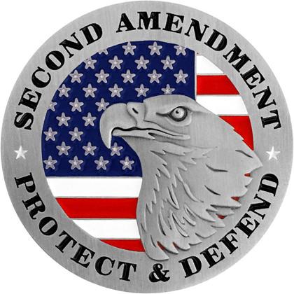 Second Amendment - Protect And Defend Pin